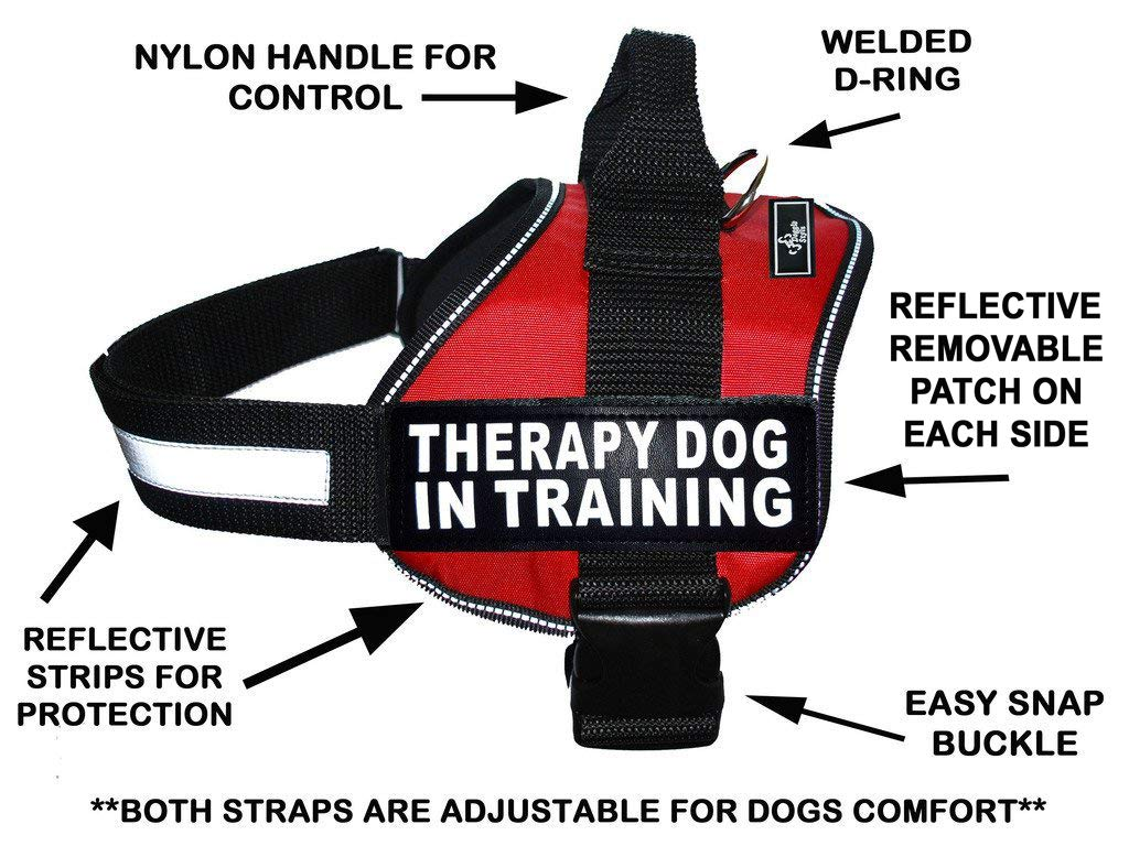 Therapy Dog in Training Nylon Dog Vest Harness. Purchase Comes with 2 Reflective Therapy Dog in Training pathces. Please Measure Your Dog Before Ordering (Girth 24-31'', Red)
