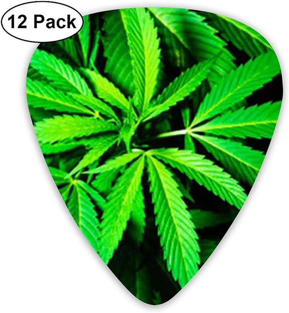 Púas de guitarra clásica Instrumento Plectrums de cannabis verde