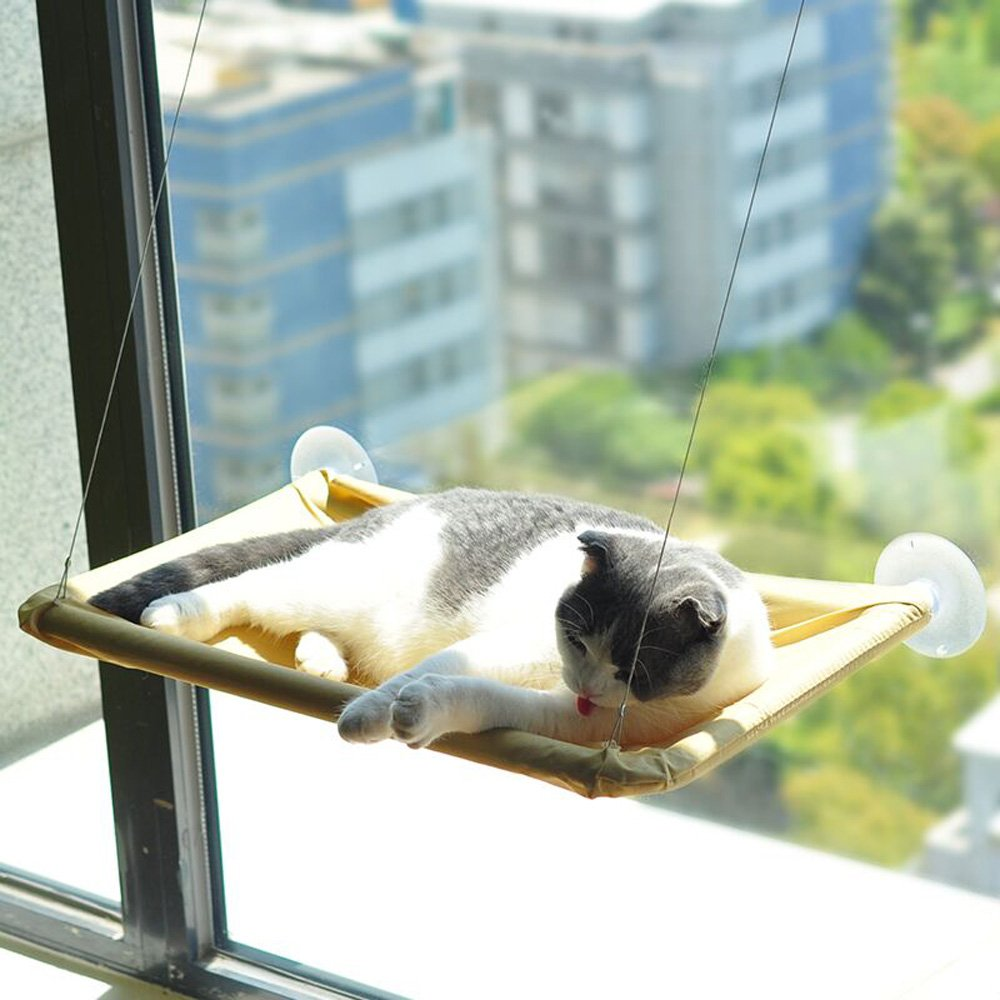 iPetoo Cat Window Perch, Cat Bed Window Hammock Pet Resting Sunny Seat for Pet Cat with Durable Suction Cups and Fixing Screw, Safety Cat Shelves Weighted ...