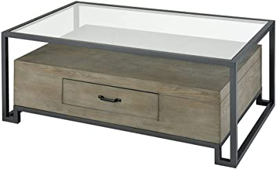 Stein World Coffee Table in Gray
