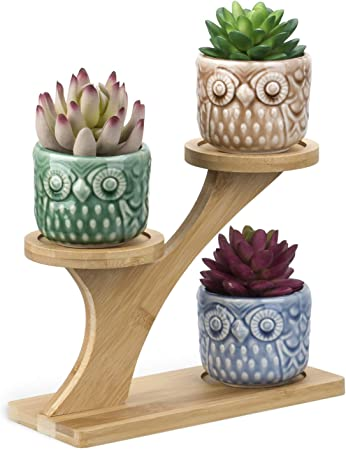 White Ceramic Planter Pots Set Of 3 Cute Succulent Flower W Tray Tiers Stand