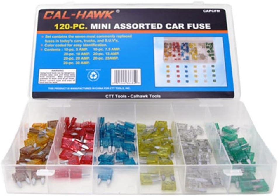 120 pcs Assorted Car Truck Mini Fuse 5,10,15,20,25,30 AMP bus