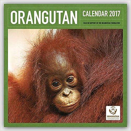 Descarga gratuita del libro de dieta de 17 días Orangutan 2017: Original Carousel-Kalender 3800338475 PDF
