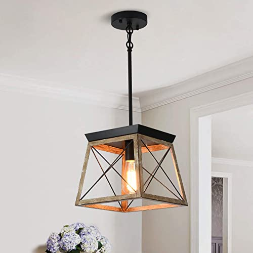 Ganeed Farmhouse Pendant Light Metal Cage