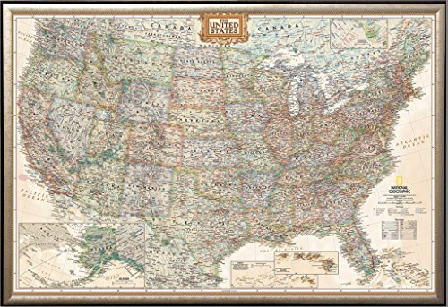 Framed Executive US Push Pin Travel Map 24x36 in Gold Finish