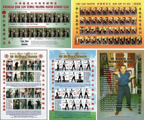 Set of 5 Wall Charts - Southern Praying Mantis