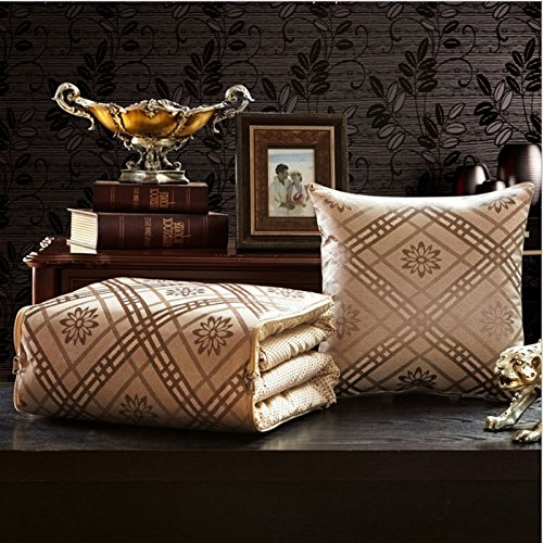 - MAFYU Summer Blanket,Pillow Quilt Dual-use Coral Blanket Thick Winter car Office Sofa Cushion Lunch Break Large,b,5050cm Quilt