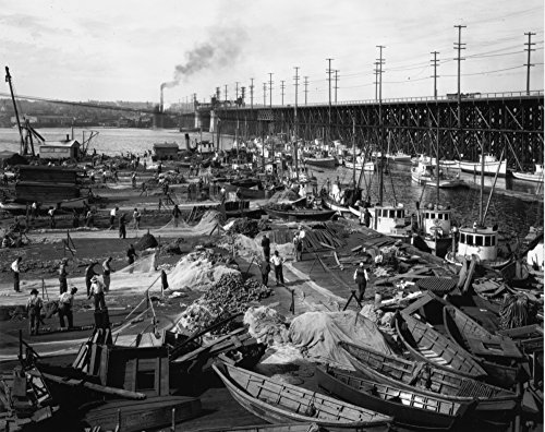 Terminal Fishermens - Fishermen's Terminal at Salmon Bay Photograph (16x24 SIGNED Print Master Giclee Print w/Certificate of Authenticity - Wall Decor Travel Poster)