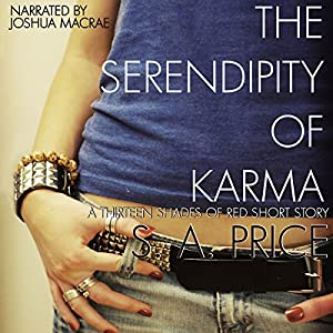 The Serendipity of Karma Audiobook