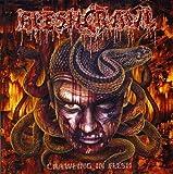 Crawling in Flesh by FLESHCRAWL (2005-03-28)