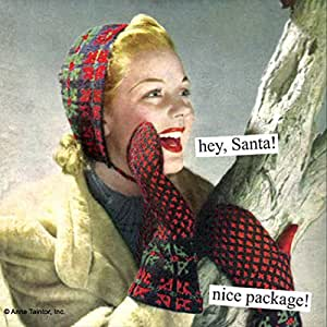 Anne Taintor 40 paper napkins holiday Christmas - Hey, Santa! nice package! by Anne Taintor