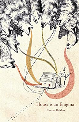 House is an Enigma (Cowles Poetry Prize Winner)