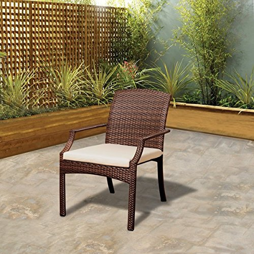 Atlantic Outdoor Arm Chair (Patio Furniture/ Dining Chair Contemporary, Jersey Brown Wicker Stacking Armchair Cushion Included (Set of 4) PLI_Sani_Arm_4_BR. 36 in High x 26 in Long x 24 in Wide)