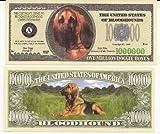 Bloodhound Dog $Million Dollar$ Novelty Bill Collectible