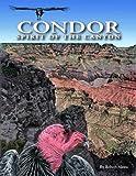 Condor, Robert Mesta, 0938216856