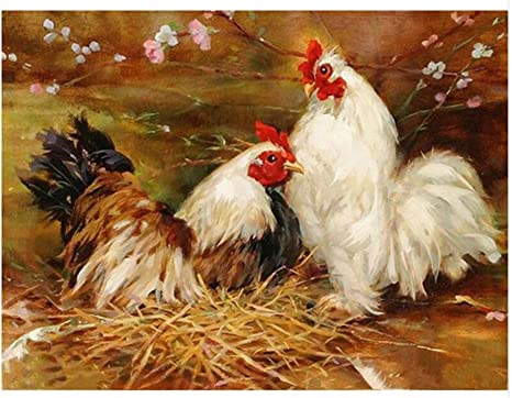 "16x20/"" DIY Acrylic Paint By Number kit Oil Painting On Canvas Chicken Rooster 59"
