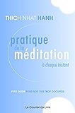 Pratique de la méditation à chaque instant : Petit guide pour nos vies trop occupées (Sciences humainesTraditions)