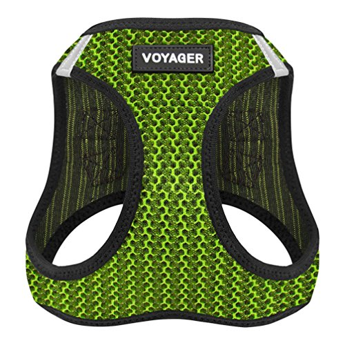 Best Pet Supplies Voyager All Weather No Pull Step-in Mesh Dog Harness with Padded Vest, Lime Green, Small (Harness Cat D-ring)
