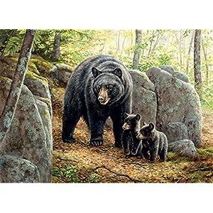Cobblehill 80154 1000 Pc Mama Bear Puzzle Vari