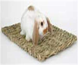Peter Woven Grass Mat for Rabbits