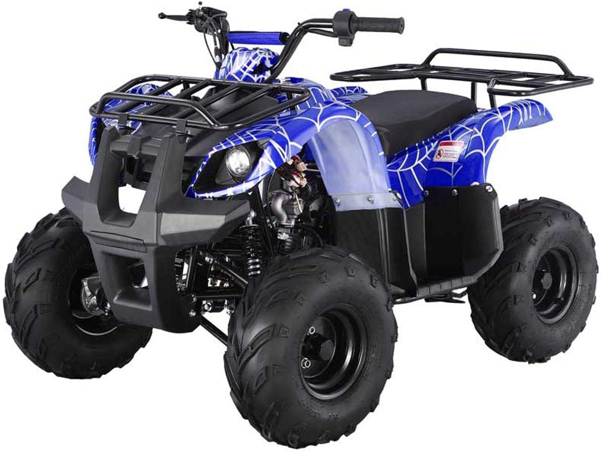 TAO Atv 125cc Fully Automatic with Reverse 1 Year Engine Warranty