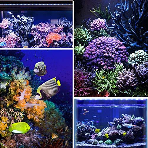 TOPLANET 135W Led para Acuarios Lámpara UV Azul Luz para Nano Pecera Coral Grow Impermeable IP65 85CM: Amazon.es: Iluminación