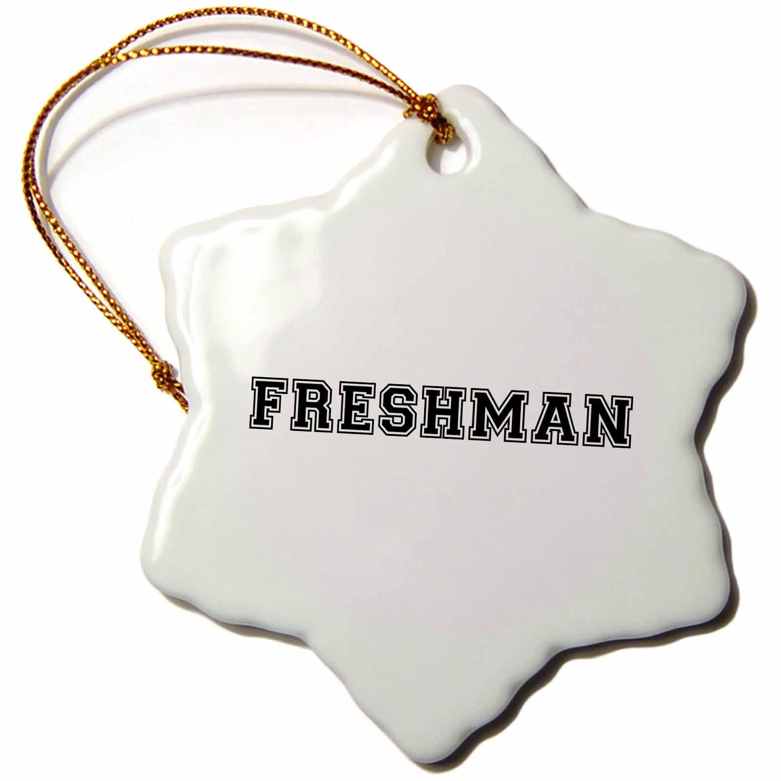 3dRose orn_151224_1 Freshman High School or College or University Fresher Preppy Black Text Snowflake Porcelain Ornament, 3-Inch