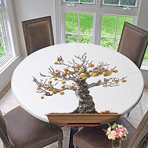 PINAFORE HOME Round Premium Tablecloth Crab Apple Bonsai with Fruit Stain Resistant 50