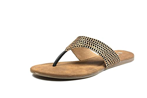 b1a184501041 Inc.5 Women s Fashion Sandals  Buy Online at Low Prices in India - Amazon.in