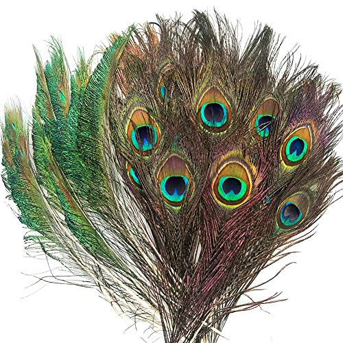 Hangnuo 40 Set Peacock Feathers and Swords for DIY Crafts Wall Art Wedding Decoration Floral Arrangements Jewelry Making and Costume Decor