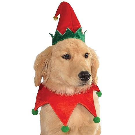 Amazon.com: Sombrero de Elfo y collar Pet Costume perro ...
