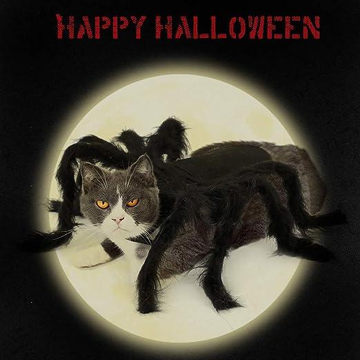 Weehey Disfraz de Gato Araña de Halloween Disfraces para Mascotas ...