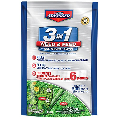 Bayer Advanced 704840B 3-in-1 Weed and Feed for Southern Lawns Bermuda Grass Greens