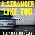 A Stranger Like You | Elizabeth Brundage