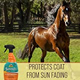 Santa Fe Coat Conditioner & Sunscreen, Non-Slippery