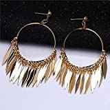 Sumanee Jewelry Row Tassel Big New Fashion Gift Ear Stud Hoop Gold Plated Earrings