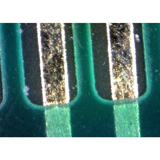 Erwachsene Trophy Universal Monoschnur Quantum Unisex/ 0,20 mm transparent