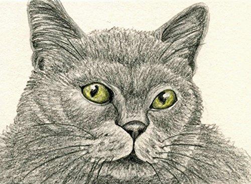 ACEO Original Trading card-Cat Pet Art-Carla Smale