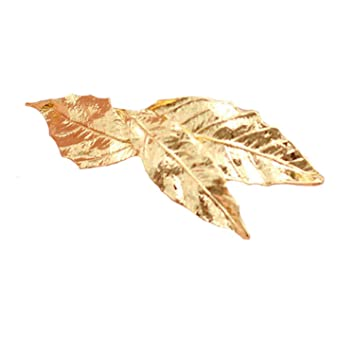 bcd0499c8 Amazon.com : Korean Cute Gold Silver Bronze Plated Leaf Girls Hair Clips  Barrette Metal Hair Accessories For Women : Beauty