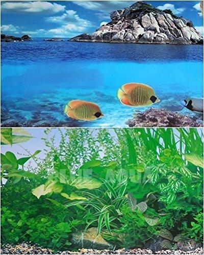 48(L) x 23(H) Double Sided Aquarium Background Blue Aqua
