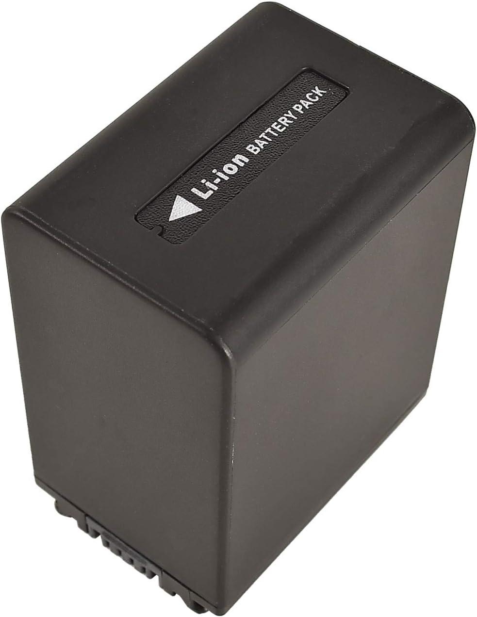Dual-Ladeger/ät USB kompatibel mit Sony HDR-CX230 HDR-CX260V HDR-CX290 HDR-CX300 HDR-CX305 HDR-CX350V HDR-CX360V HDR-CX380 DSTE 2-St/ück Ersatzakku Set NP-FV100 Batterie