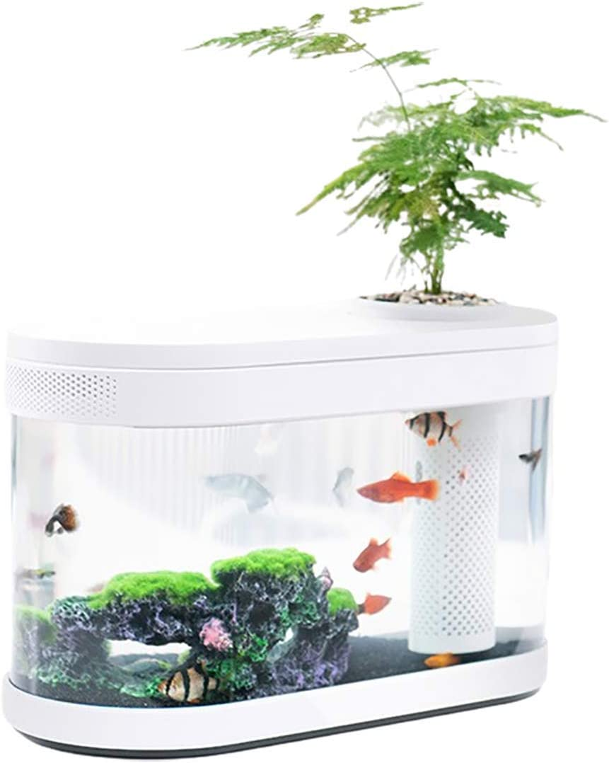 Sheebo 2 Gallon Modern Aquarium Kit, Small Amphibious Ecology Fish Tank with LED Ambient Light, Filtration System Quiet Water Pump Small Plant Decor Ecosystem for Betta Fish and Various Fish