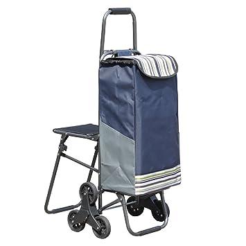ANDE Carrito de compras con asiento, 40 L carrito de compras plegable Bolsas a prueba de agua Viaje Ancianos Escalada Escaleras Supermercado: Amazon.es: ...