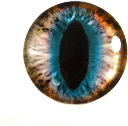 30mm Glass Eye in Purple and Yellow for Taxidermy Sculptures or Jewelry Making Pendant Crafts