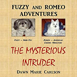 The Mysterious Intruder Audiobook