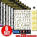 6 Pack Workout Banner Poster Home Fitness Training Complete Exercises For Body Building, Weight Loss & Increased Flexibility
