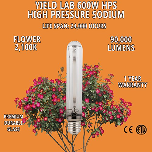 Yield Lab 600w High Pressure Sodium (HPS) Digital HID Grow Light Bulb (2100K) – 3 Bulbs – Hydroponic, Aeroponic, Horticulture Growing Equipment by Yield Lab (Image #3)