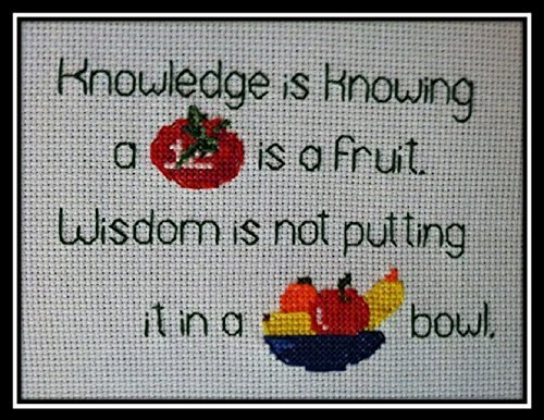 Amazon Completed Finished Counted Cross Stitch Knowledge Vs