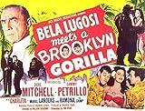 Bela Lugosi Meets a Brooklyn Gorilla POSTER Movie (1952) Style A 11 x 14 Inches - 28cm x 36cm (Bela Lugosi)(Duke Mitchell)(Sammy Petrillo)(Charlita)