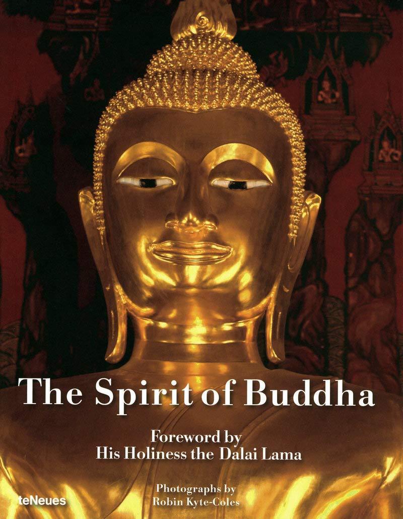 Read Online The Spirit of Buddha pdf